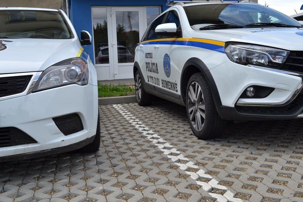 словацкая полиция